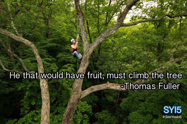 Climb the tree. [Quote pic]